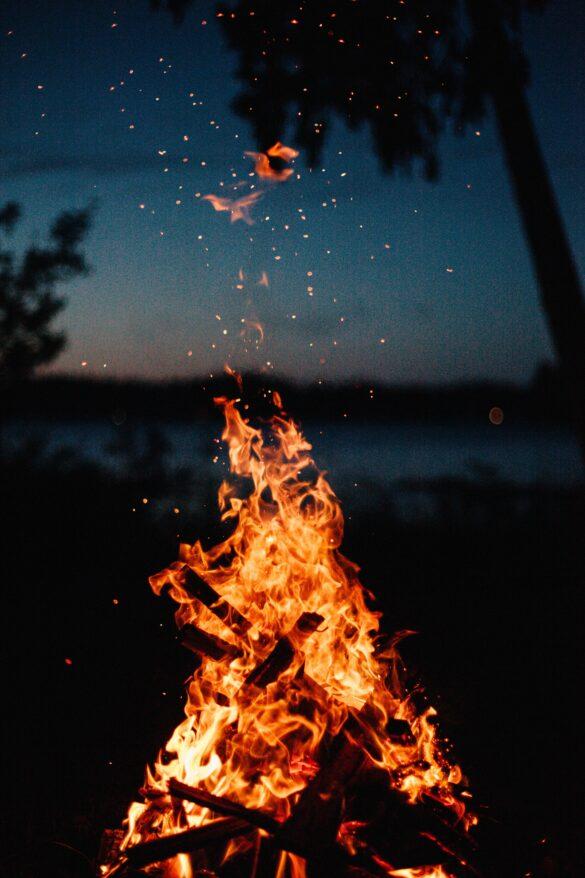 آتش هم حریف این بلا نشد