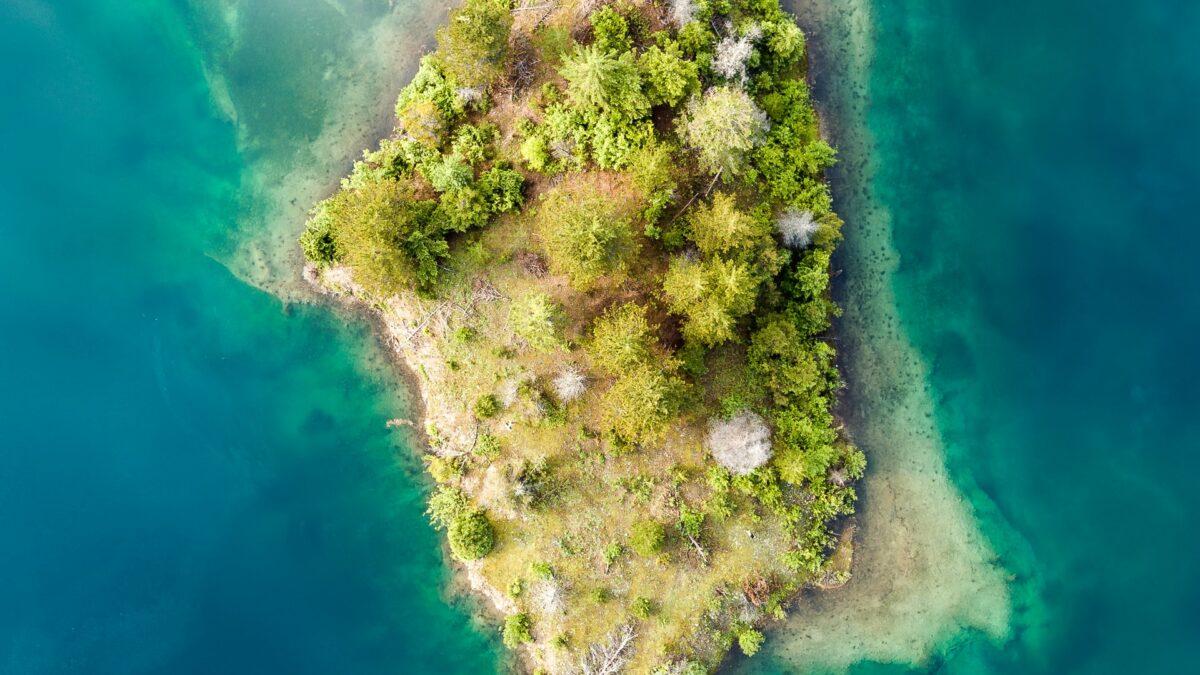 Extrovert Island